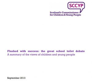 Flushed with success summary cover